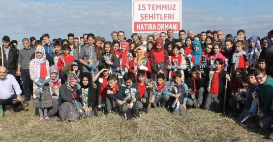15 Temmuz Şehitleri anısına hatıra ormanı kuruldu
