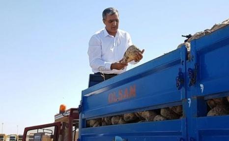 Konya Şeker Pancar Paralarını Ödemeye Başladı