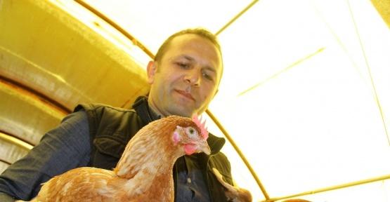 Arkadaşından ödünç aldığı 1 horoz 2 tavuk hayatını değiştirdi