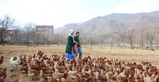 Atanamayan eşine destek olmak için tavuk çiftliği kurdu
