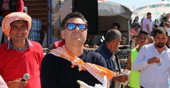 Muğla Bodrum'da deve güreşi festivali yapıldı