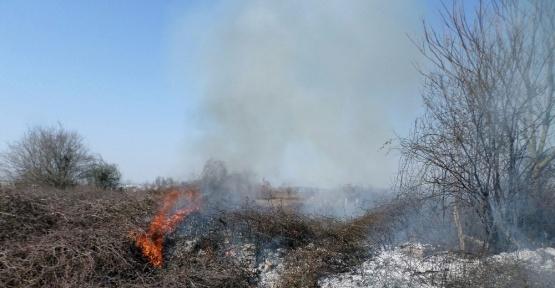 Çalılık yangını itfaiye ekiplerince söndürüldü