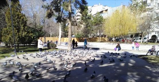 Eskişehir'de çocuklar parklara koştu