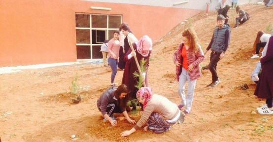 Gençlik merkezi gönüllüleri kız yurdu bahçesinde fidan dikti