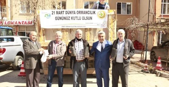 Hisarcık Orman İşletme Şefliği 2 bin 500 fidan dağıttı