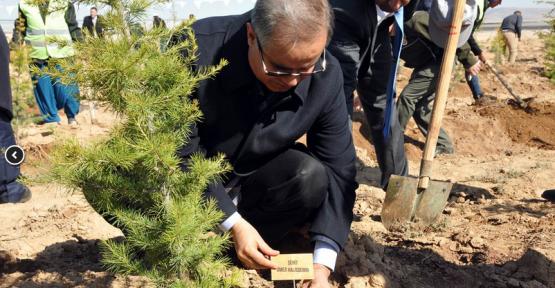 Karaman'da 15 Temmuz Hatıra Ormanı kuruldu