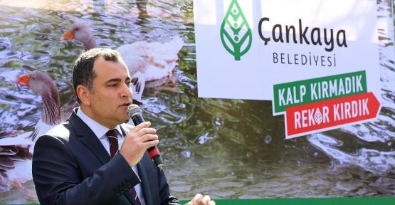 Maltepe Ördekli Park'la yeniden canlandı