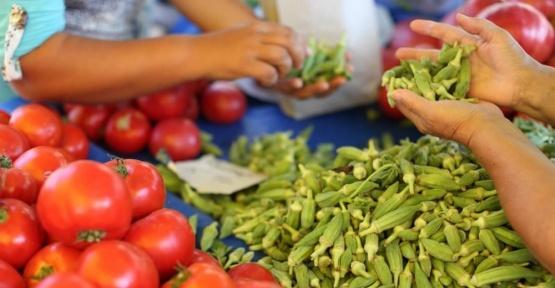Organik tarım destekleri için son 3 gün