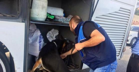 Otobüste uyuşturucu ve bomba ihbarı asılsız çıktı