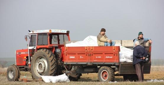 (Özel Haber) Trakya çiftçisi 'Nitratlı gübre yasağına' tepkili