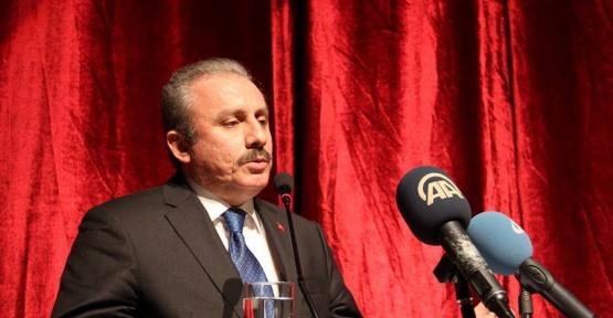 """TBMM Anayasa Komisyonu Başkanı Şentop: """"Başkanlık sistemi 50 yıllık bir tartışma"""""""