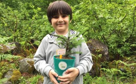 TEMA Vakfı, Ağaç Kardeşliği İle 50 İlde 5 Bin 400 Çocuğa Ulaşacak