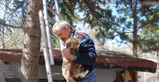 Tokat'ta vatandaşın kedi kurtarma operasyonu