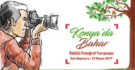 Konya'da ödüllü fotoğraf yarışması bilgileri