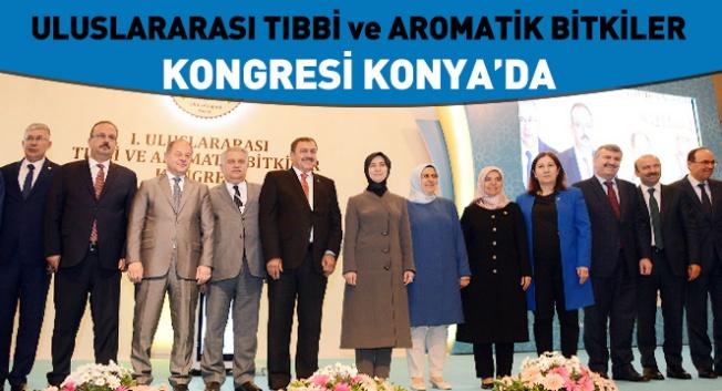 Tıbbi ve Aromatik Bitkiler Kongresi Konya'da Başladı
