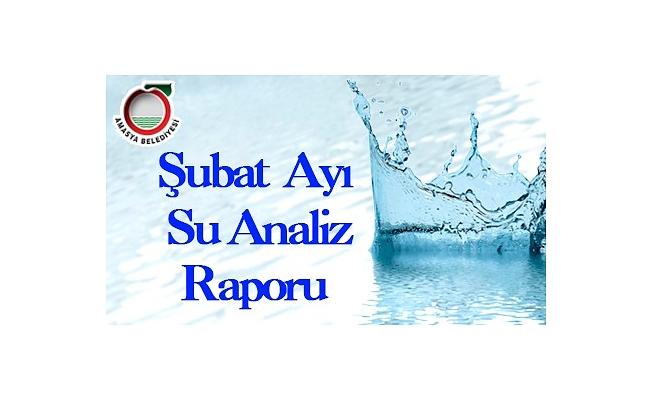 Şubat Ayı Su Analiz Raporu