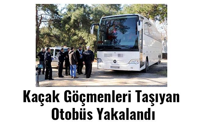 Kaçak Göçmenleri Taşıyan Otobüs Yakalandı