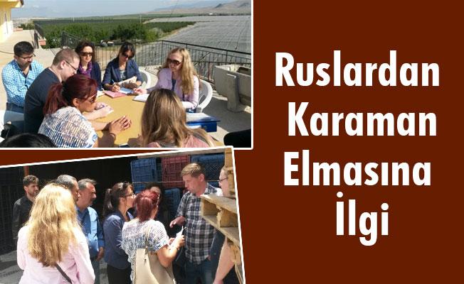 Ruslardan Karaman Elmasına İlgi