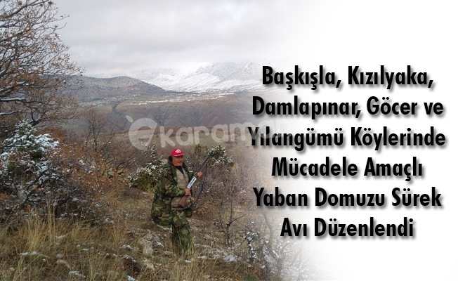 Başkışla, Kızılyaka, Damlapınar, Göcer ve Yılangümü Köylerinde Mücadele Amaçlı Yaban Domuzu Sürek Avı Düzenlendi