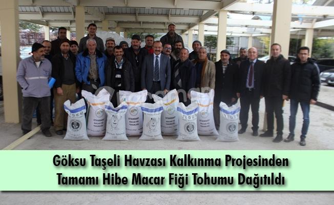 Göksu Taşeli Havzası Kalkınma Projesinden Tamamı Hibe Macar Fiği Tohumu Dağıtıldı