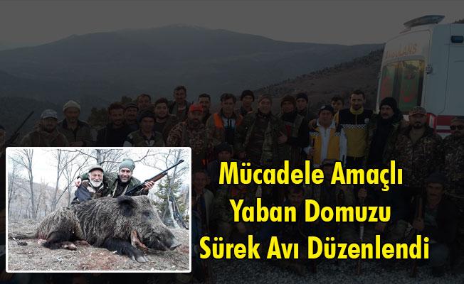 Yukarı Kızılca ve Damlapınar Köylerinde Mücadele Amaçlı Yaban Domuzu Sürek Avı Düzenlendi