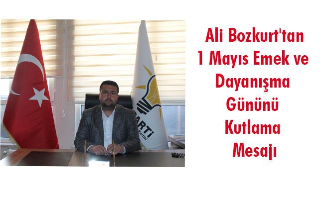 Ali Bozkurt'tan 1 Mayıs Emek ve Dayanışma Gününü Kutlama Mesajı
