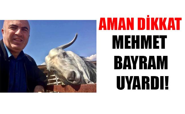 MEHMET BAYRAM UYARDI!