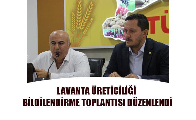 LAVANTA ÜRETİCİLİĞİ BİLGİLENDİRME TOPLANTISI DÜZENLENDİ