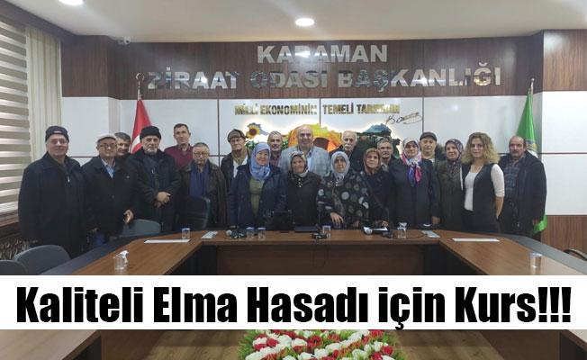 Kaliteli Elma Hasadı için Kurs!!!