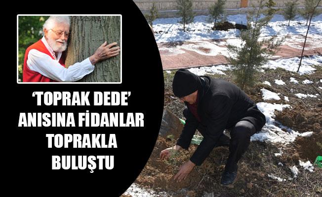 'TOPRAK DEDE' ANISINA FİDANLAR TOPRAKLA BULUŞTU