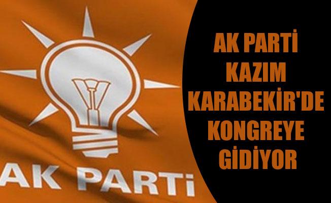 AK PARTİ KAZIM KARABEKİR'DE KONGREYE GİDİYOR