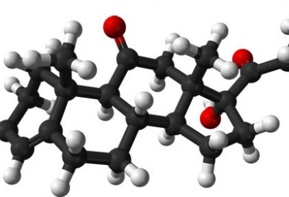 Kortizon nedir?