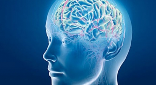 Kulak Kanaması Beyin Kanamasın Habercisi Olabilir Dikkat