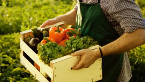 Organik Tarım Kredisi Nedir?