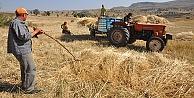 Genç çiftçilere devletten 30 bin TL hibe başvuruları