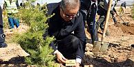 Karaman#39;da 15 Temmuz Hatıra Ormanı kuruldu