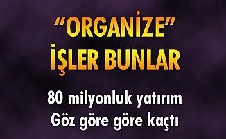 """""""ORGANİZE"""" İŞLER BUNLAR"""