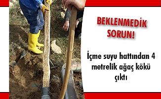 İçme suyu hattından 4 metrelik ağaç kökü çıktı