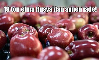 19 ton elma Rusya'dan aynen iade!