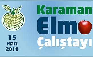 Bölgenin En Kapsamlı Elma Çalıştayı Karaman'da Yapılacak