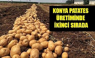 KONYA PATATES ÜRETİMİNDE İKİNCİ SIRADA
