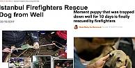 Dünya Basınından Kuyu Köpeğin Kurtarılma Operasyanuna Büyük İlgi