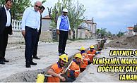 Larende, Sümer ve Yenişehir'de doğal çalışmaları sona eriyor