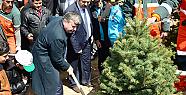 Ağaçlandırma çalışmaları 2017 yılında devam edecek