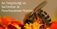 Arı Yetiştiriciliği Ve Bal Üretimi ile Para Kazanmak Mümkün
