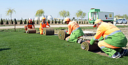 Konya Büyükşehir Belediyesi, çimi kendisi...