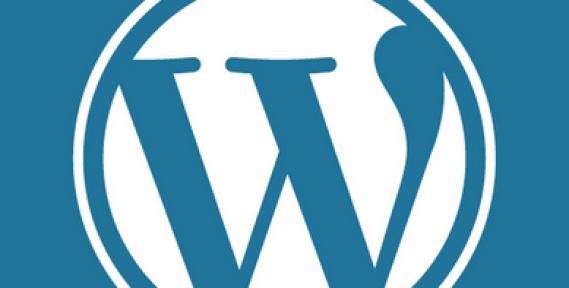 Wordpress İle İnternet Sitesi Hazırlamanın Püf Noktaları